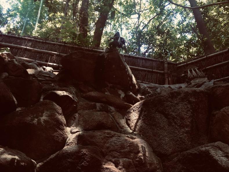 垂水神社8