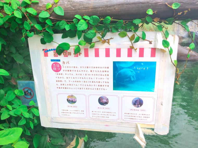天王寺動物園 看板 関西弁